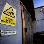 Fabrica Madera Abandonada