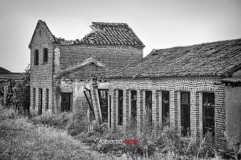 Palomar Abandonado